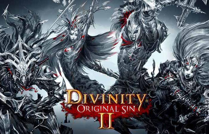 سی دی کی بازی Divinity Original Sin 2 اورجینال