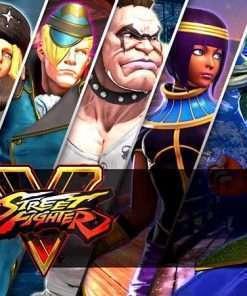 سی دی کی Street Fighter V Season Pass - سیزن پس های بازی