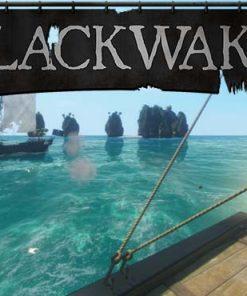 سی دی کی بازی Blackwake اورجینال
