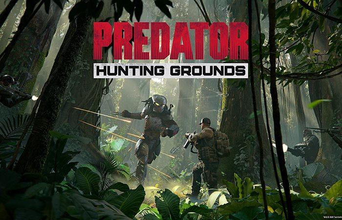 سی دی کی اورجینال بازی Predator Hunting Grounds